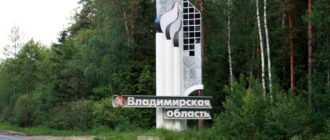 Детские пособия во Владимирской области